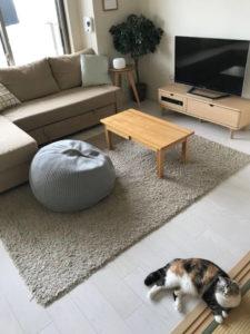 ペットと赤ちゃんの同居準備